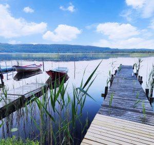 Fiske i Skåne